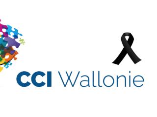 CCI-WALLONIE