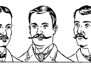 ccibw-formation-profiling