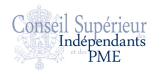 CONSEIL SUPERIEUR DES INDÉPENDANTS ET DES PME